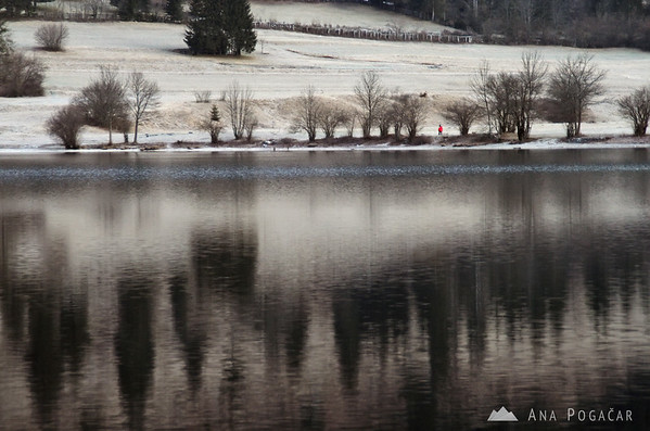 Lake Bohinj on a cold January morning