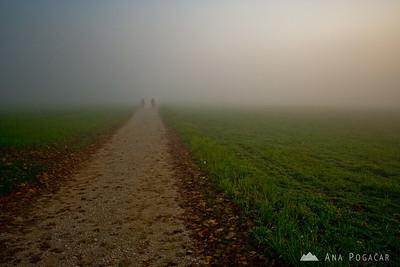 Foggy walk around Groblje