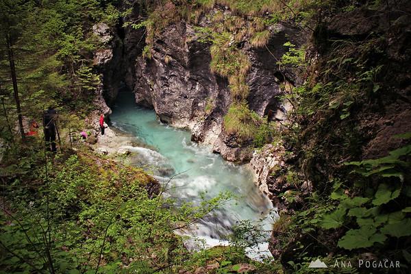 Predaselj gorge in the Kamniška Bistrica river valley