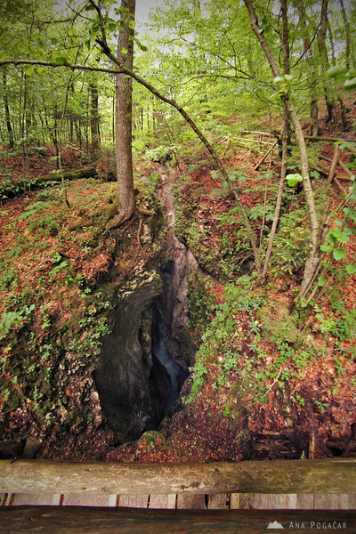 Predaselj gorge in the Kamniška Bistrica river valley
