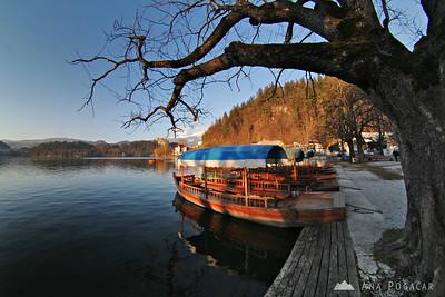 Sunny Bled - Feb 10, 2008