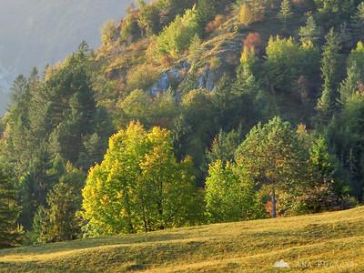 Kamniški vrh - Oct 7, 2009