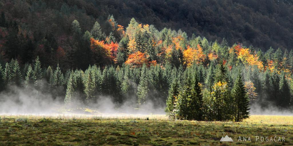 Krma valley in the Julian Alps