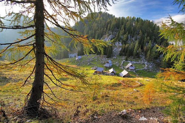 Hiking around Planina Viševnik in the Julian Alps