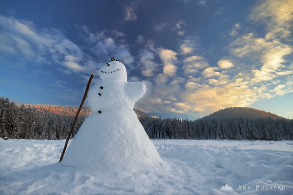 Pokljuka plateau in winter