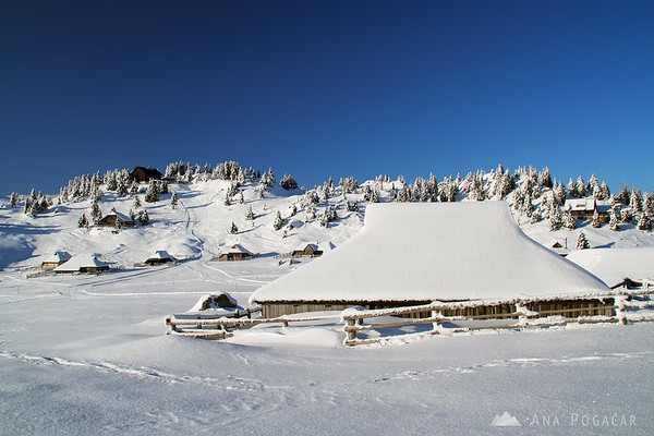 Velika planina in winter