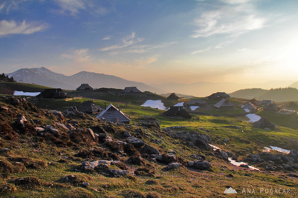 Velika planina at sunrise