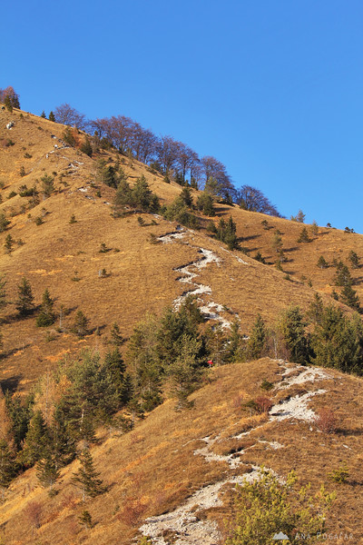 The last stretch of the climb to the top of Kamniški vrh hill