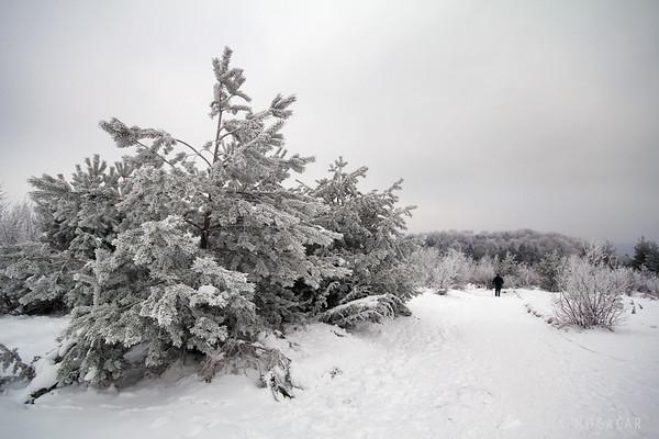 Mt. Slivnica in snow