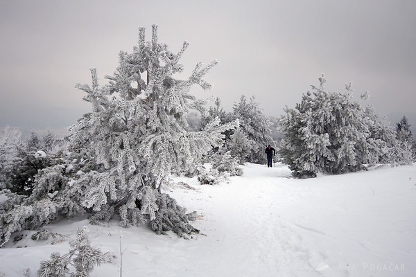 Mt. Slivnica in snow