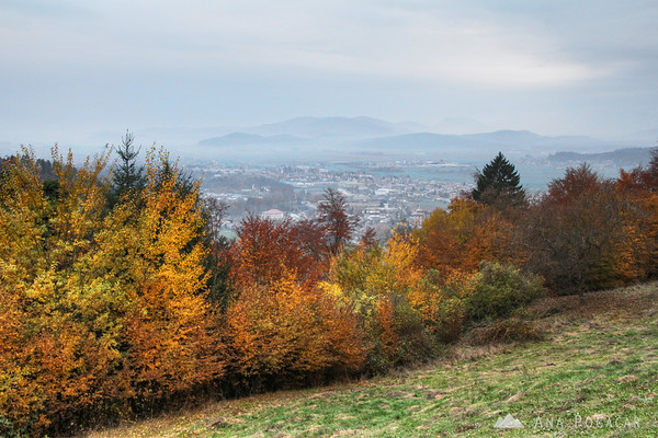 Fall colors on Stari grad hill