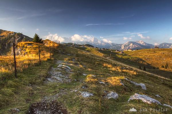 On the ridge trail