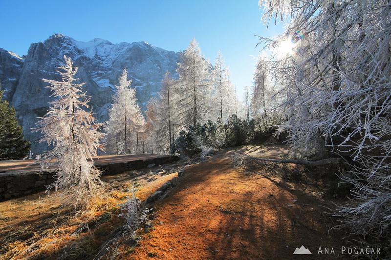 Hiking to the Vršič Pass