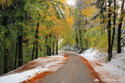 Kamnik in first snow - Oct 29, 2012