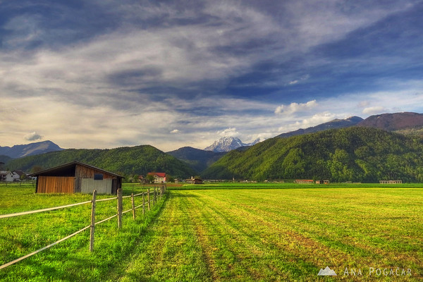 Fields below Mt. Krvavec