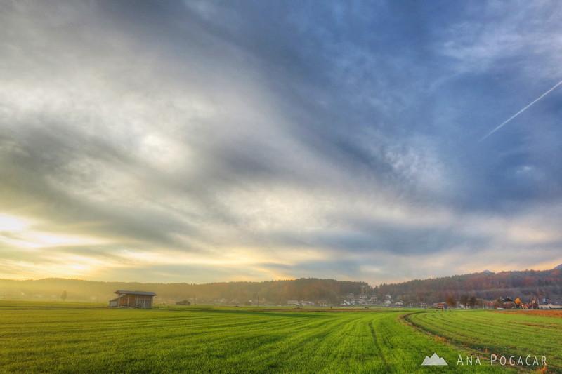 Fields near Kamnik in the sweet light.