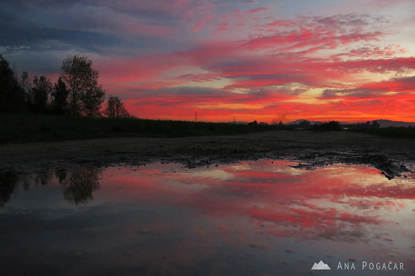 Red clouds and their reflection in a puddle.