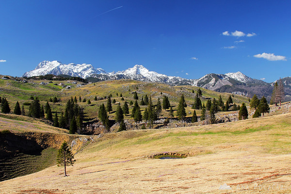 Velika planina plateau