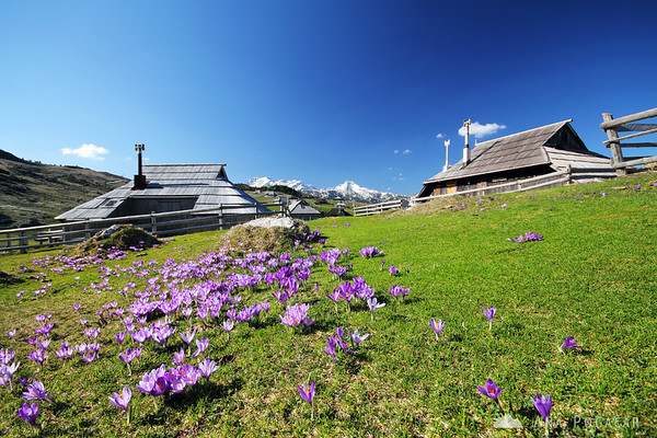 The shepherd village of Velika planina