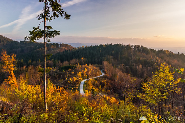 Fall colors in the woods below Špica hill