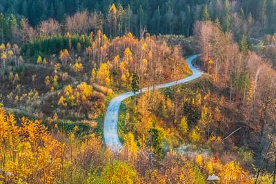 Climbing Špica hill - Nov 16, 2013