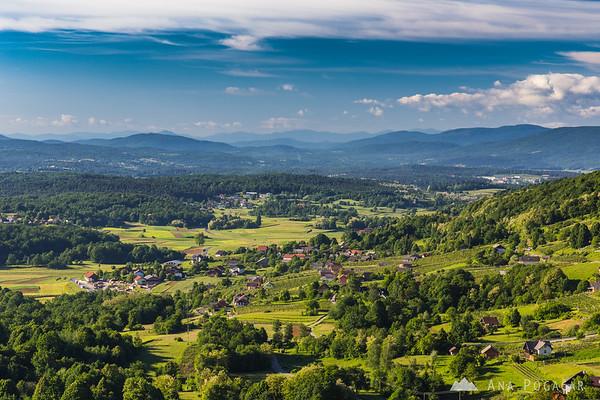 Rolling hills of Dolenjska