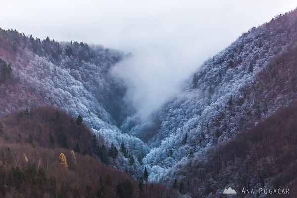 Cold and frosty valley from Kamniški vrh hill