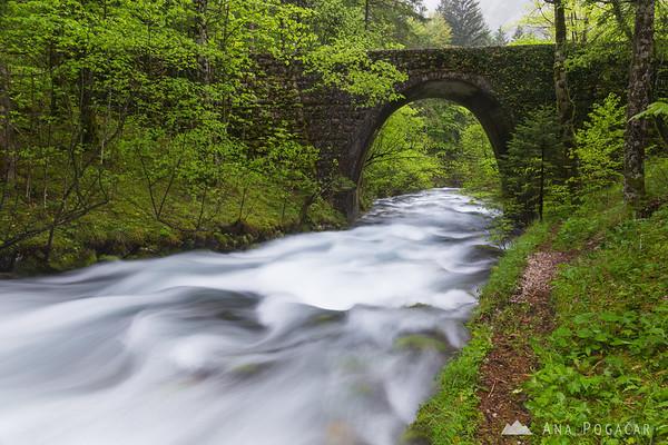 Bridge at the source of the Kamniška Bistrica river