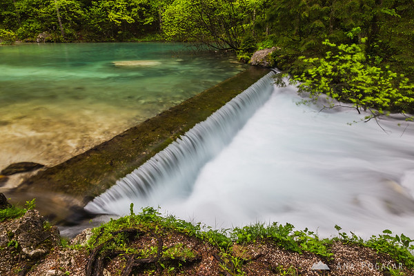 At the source of the Kamniška Bistrica river