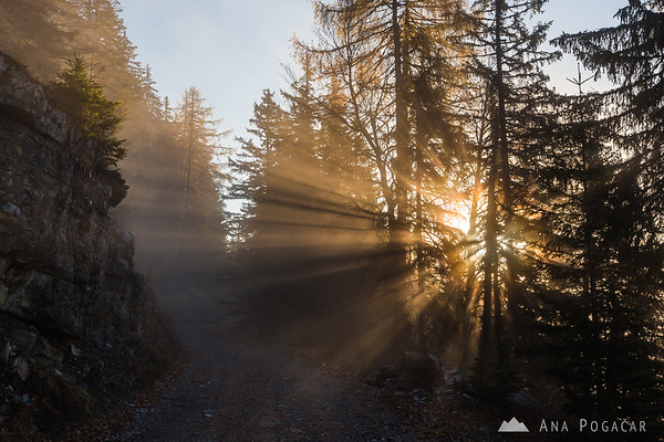 Sun and fog in the hills above Kranjska Gora