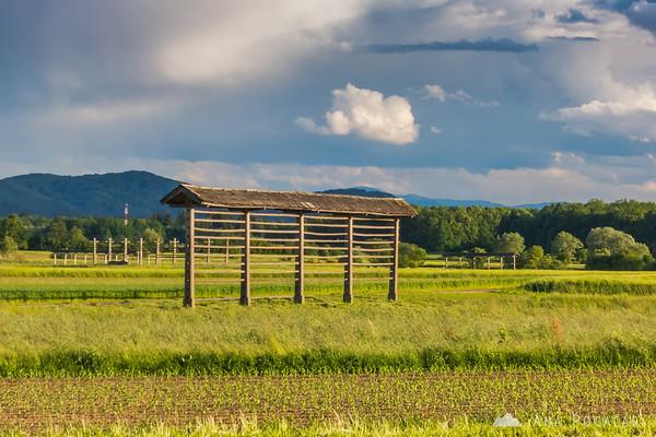 A hayrack near Zalog