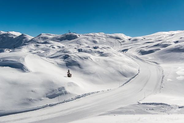 Skiing on Mt. Vogel