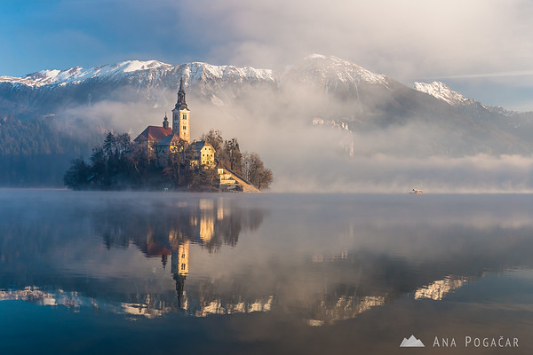 "A traditional ""pletna"" boat approaching the island on Lake Bled after sunrise"