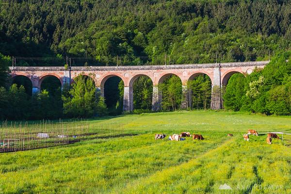 Railway viaduct near Borovnica (Jelenov viadukt)