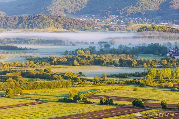 Morning mists over the Ljubljana Marshes (Ljubljansko barje) from St. Ana hill