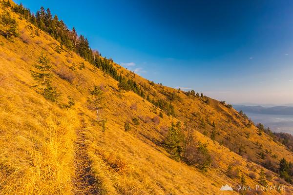 Climbing the Kamniški vrh hill