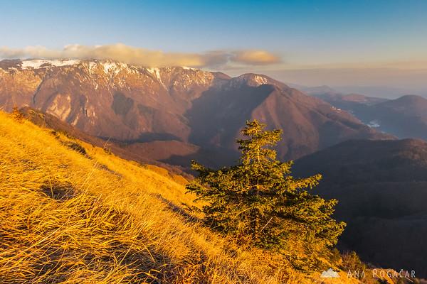 Views from the Kamniški vrh hill towards Velika planina before sunset