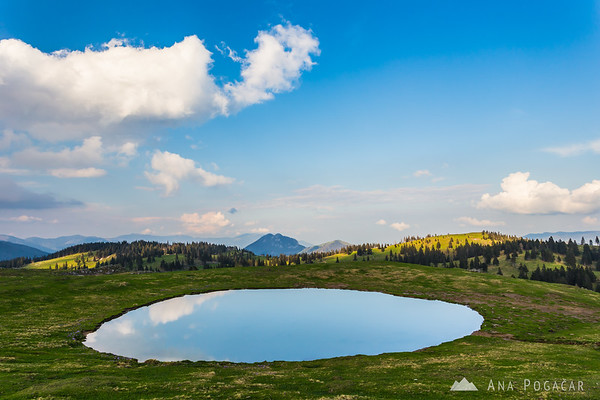 Reflection on Velika planina
