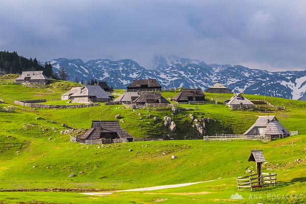 The village of Velika planina