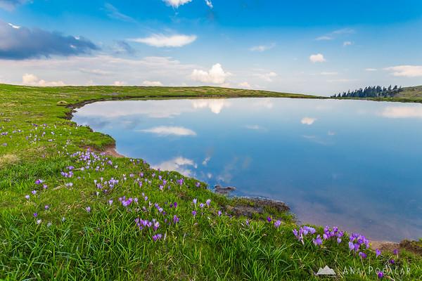 Infinity pool on Velika planina :)