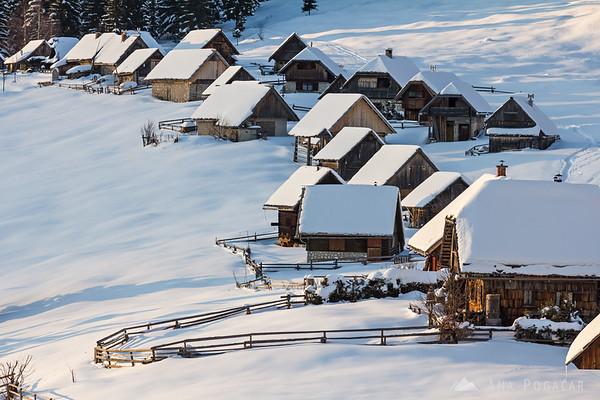 Zajamniki village