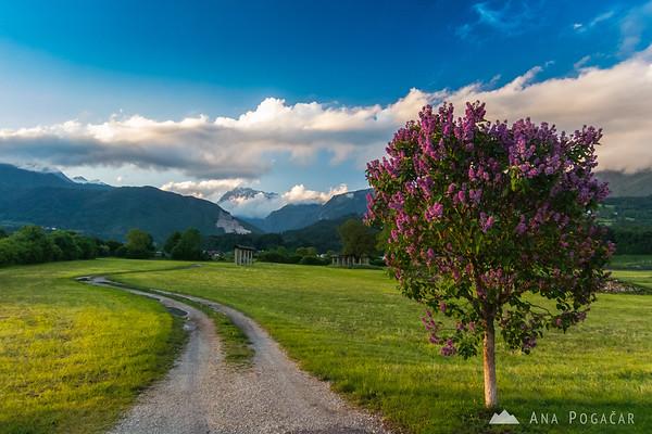 Late afternoon in Zduša near Kamnik