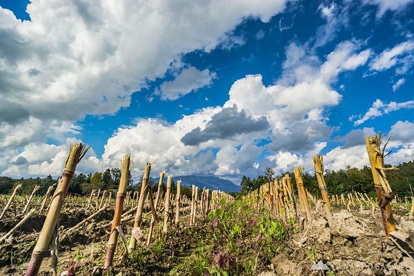 Biking around Kamnik through villages and across fields