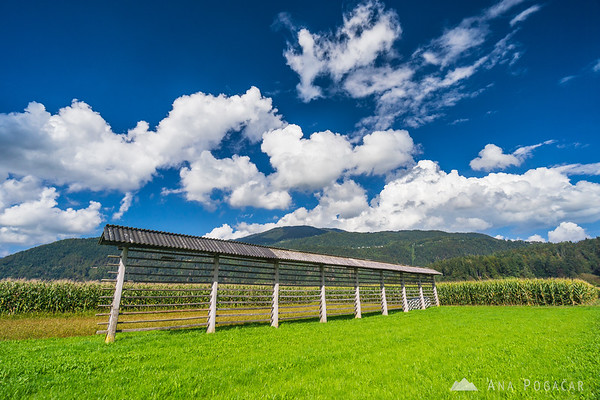 Biking around Kamnik through villages and across fields below Krvavec