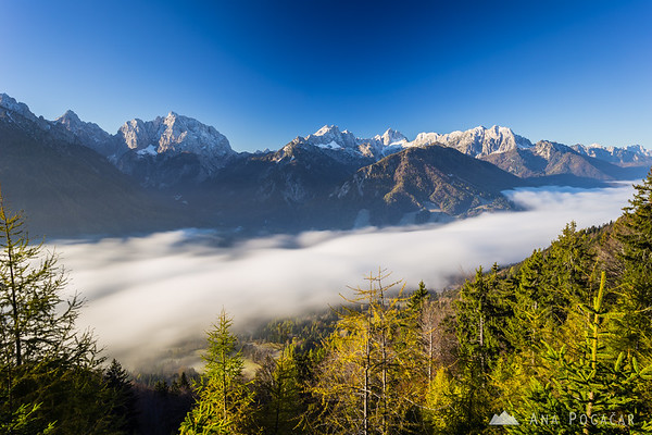 A 30-second exposure of the fog moving through the valley at Kranjska Gora.