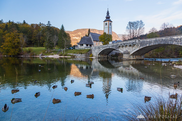 Lake Bohinj in the late afternoon