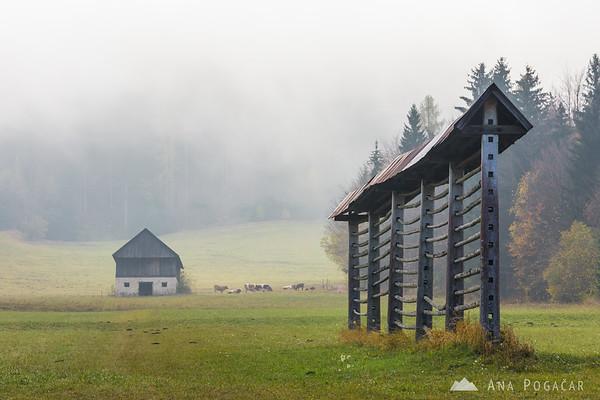 Fog in Podkoren near Kranjska Gora