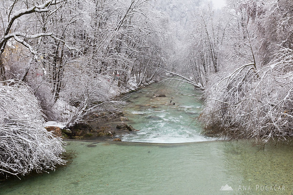After the ice and snow storm in Kamnik: Kamniški Bistrica river