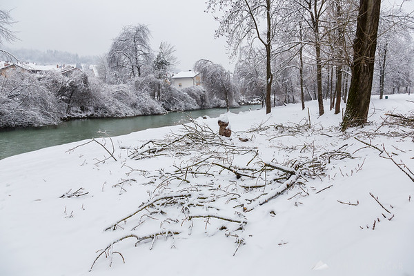 After the ice and snow storm in Kamnik: broken branches