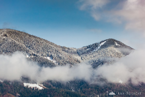 Skiing in Podkoren, Kranjska Gora